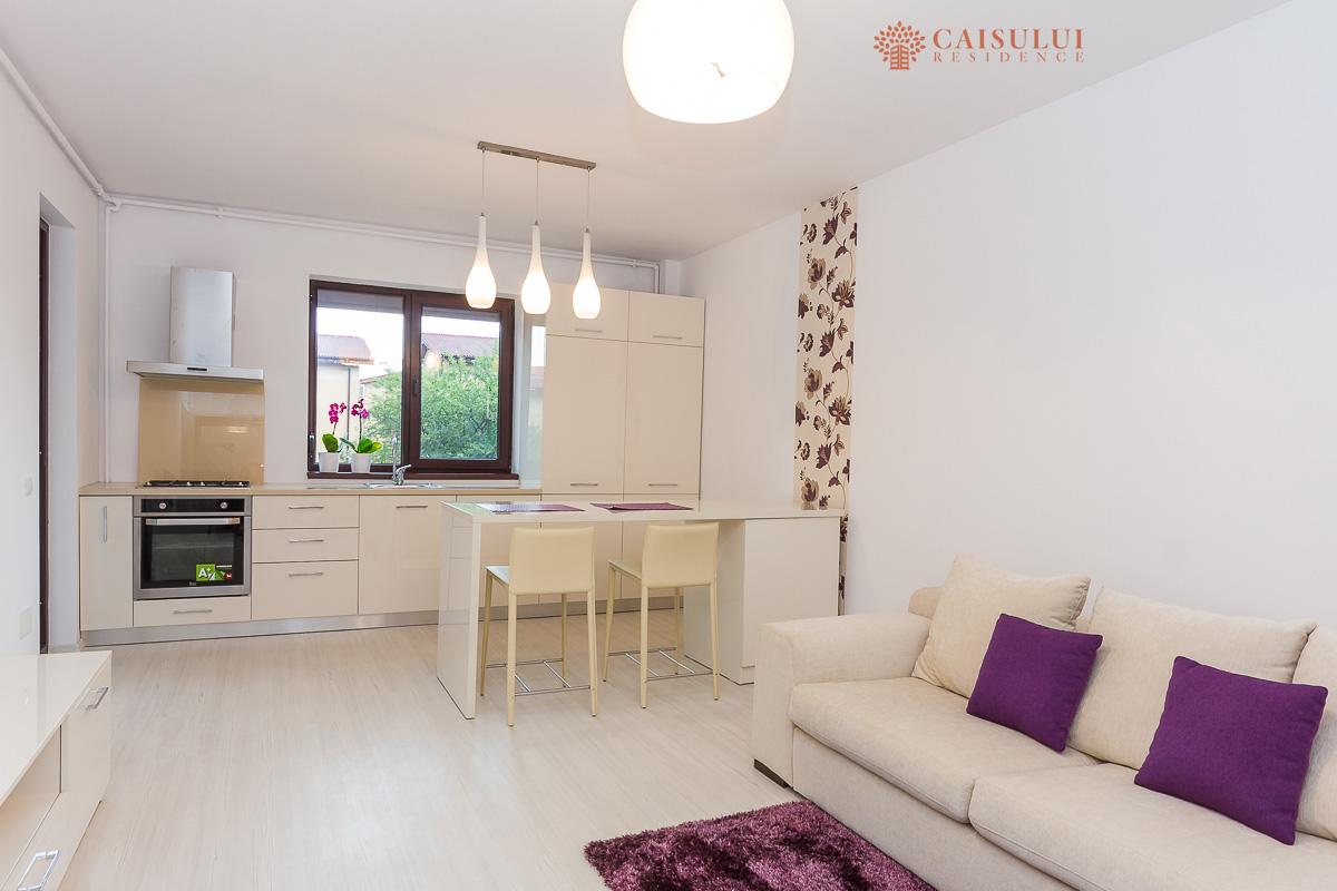 1-apartament-cu-2-camere-living-bucatarie-Fundeni